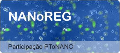 Nanoreg